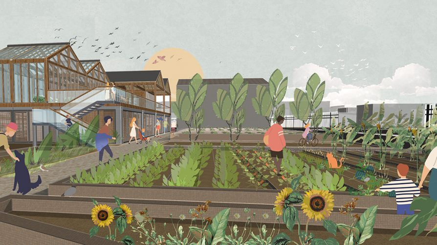 Rendering of the outdoor growing area on the urban farm
