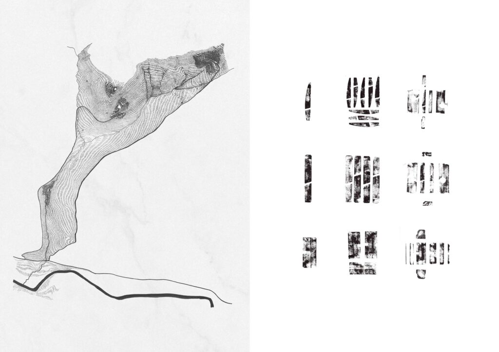 A plan highlighting the site's steep topography.  Studies were undertaken looking into mark-making using wooden hand planes.