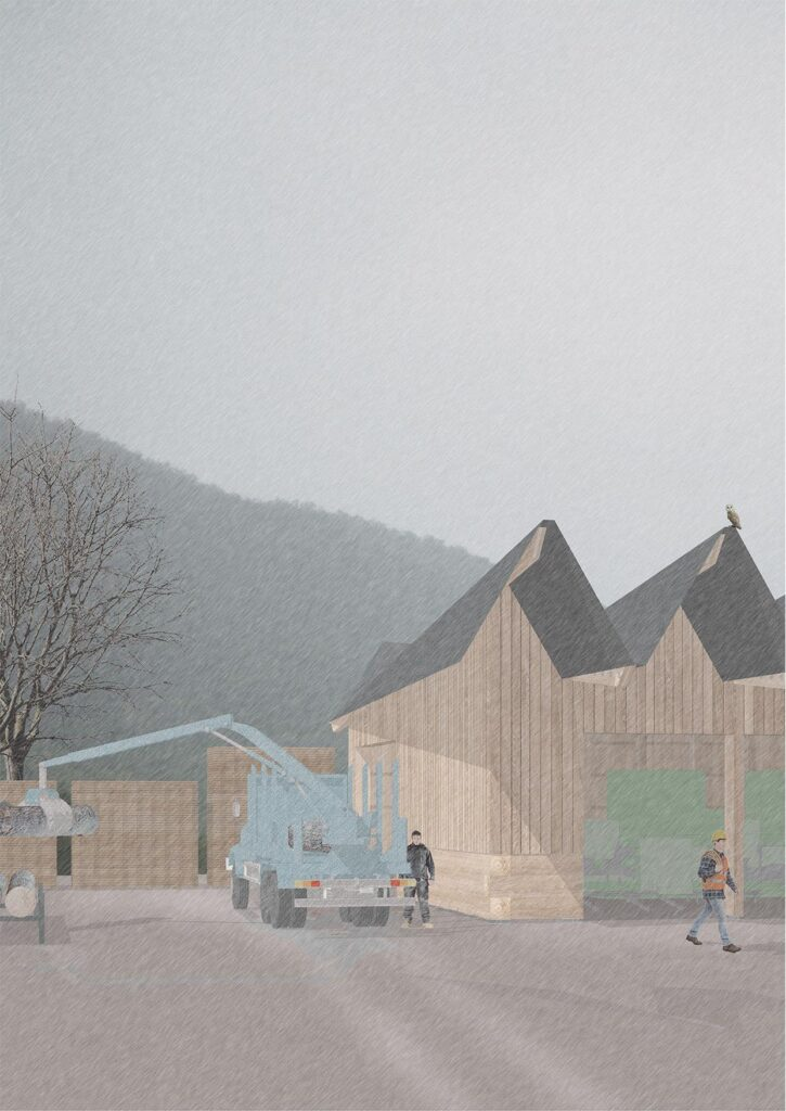 A view of the construction process, whereby trees are turned into timber in the Sawmill, and brought into the proposed building.