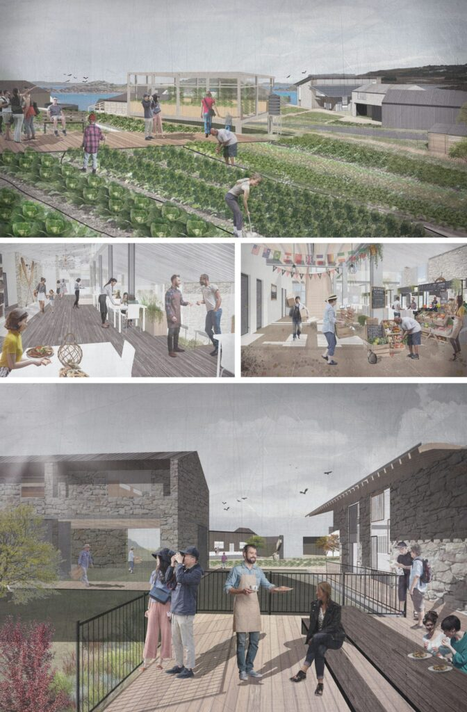 Views of the community hub and growing spaces