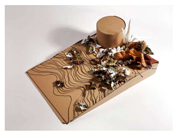 a model of contour lines and leaves