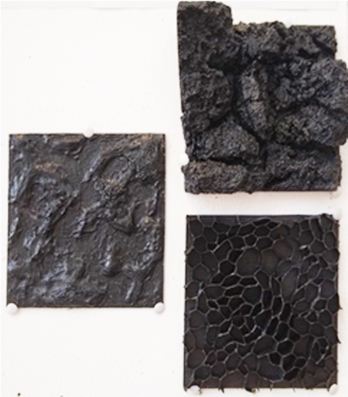 Explorations of the textures of bark at different magnifications,